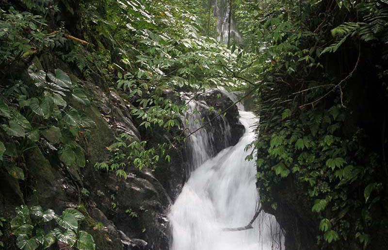 Charming waterfall 2